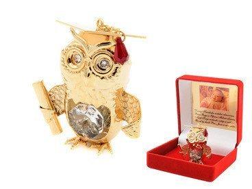 Sowa Swarovski prezent pamiątka zdjęcie z Grawerem